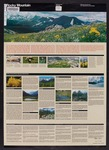 Rocky Mountain National Park, Colorado, 1983 (front) by Sarah Watson, Amy Laub-Carroll, and Jennifer Hootman