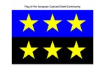 Early Flag of the EEC by Brad Allard