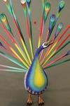 Peacock [3]