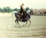 Arabian Tack on the Horse 3