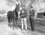 Graustark with Trainer Loyd Gentry and Turf Writer Joe Hirsch by Roda Ferraro
