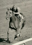 Alydar with Jorge Valasques