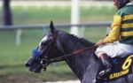 Silver Charm with Gary Stevens
