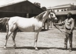 Photo 2 from the Preston Dyer Collection