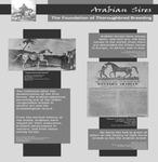 The Foundation of Thoroughbred Breeding [exhibit panel] by Roda Ferraro