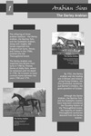 The Darley Arabian [exhibit panel] by Roda Ferraro