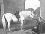 Queen Victoria's Arab