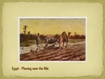 Plowing near the Nile