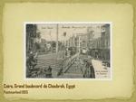 Grand boulevard de Choubrah